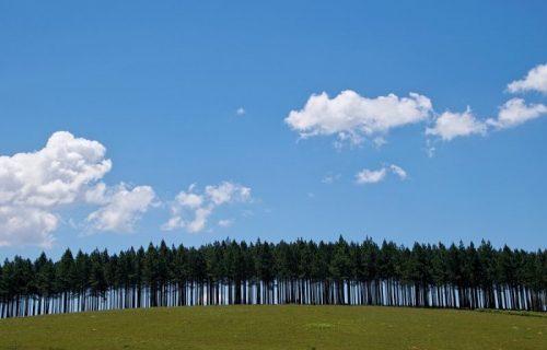 Nebo vedro