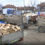 TRAGEDIJA u Ivanjici: Drvo palo na čoveka, UMRO na licu mesta