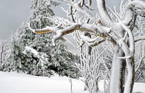 UPOZORENJE METEOROLOGA! Debeli minus od vikenda u Srbiji, temperature do 15 stepeni ispod nule
