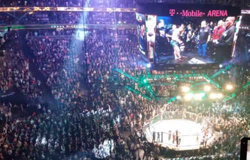 Ne okreći leđa! BRUTALNA lekcija za MMA borca! (VIDEO)