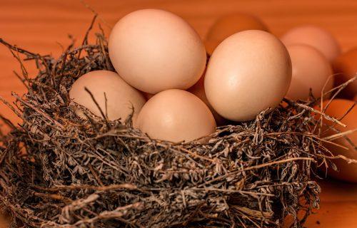 POZITIVNI EFEKTI NA ORGANIZAM: Zbog ovoga treba jesti jaja svaki dan