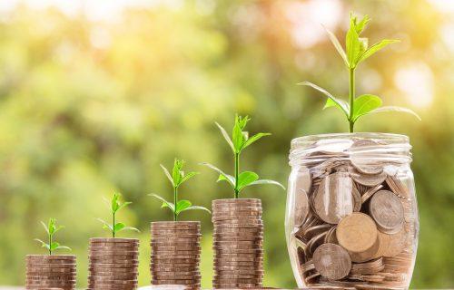 Ovaj biznis u Srbiji cveta - na uloženih 1.200 evra po hektaru, zarada ide i do 9.000 evra