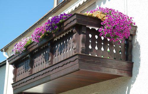 Cveće koje UVEK uspeva: Ovo su NAJBOLJE biljke za vašu terasu