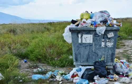 Porodica našla džakove kraj puta, a kakvo je blago u njima OTKRILI tek kada su krenuli da ih bace (FOTO)