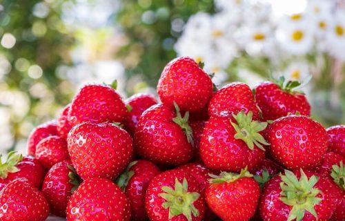 Najzdravije sezonsko voće: JAGODE su odlične za vaše ZDRAVLJE zbog ovih 5 RAZLOGA