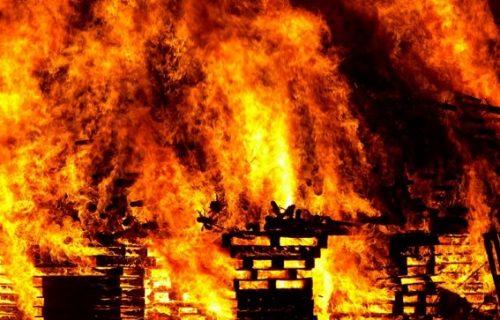 Veliki požar na Eviji: Sumnja se da je podmetnut, u gašenju učestvuje oko 60 vatrogasaca (FOTO)
