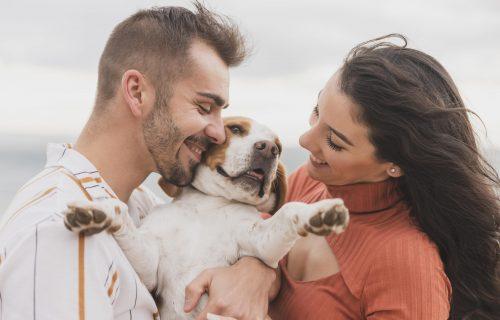 Dragi, RAZVOD može ali psa ti ne dam! LJUBIMCI su godinama sve češće deo predbračnog ugovora