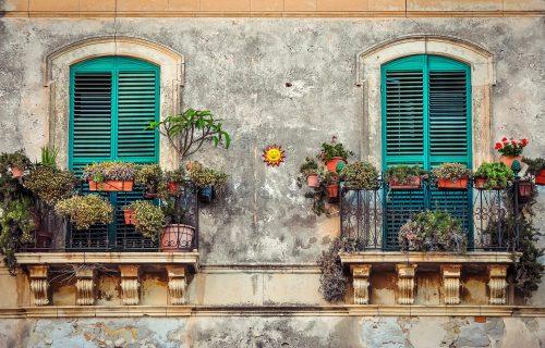 Želite cveće na terasi, ali niste sigurni koje da izaberete? Ovih 5 vrsta je idealno za balkone (FOTO)