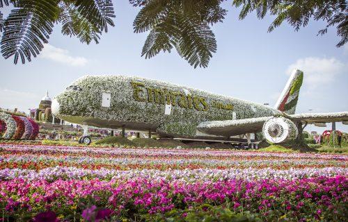 Najveća BAŠTA na svetu se nalazi u Dubaiju, a čini je više od 45 MILIONA cvetova (FOTO+VIDEO)