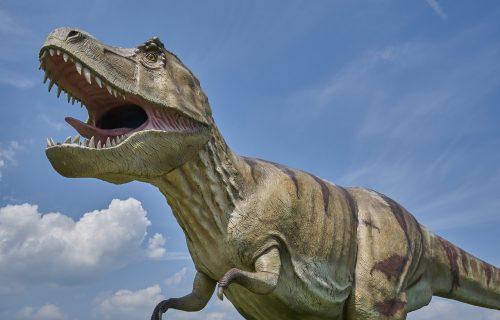 Google ima novi trik! JEDNIM KLIKOM dovedite dinosauruse u vaš dom (VIDEO)