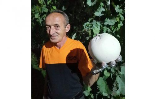 Sreten je u hladu kruške primetio veliku belu loptu, ostao je u čudu kada je shvatio o čemu je reč (FOTO)