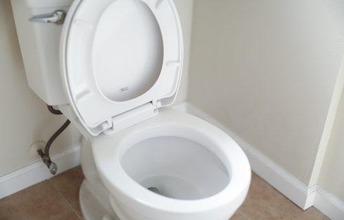 Nikako da stvarno ZABLISTA? Kućni trik od 2 sastojka pomaže da vaša WC šolja bude ČISTIJA nego ikada
