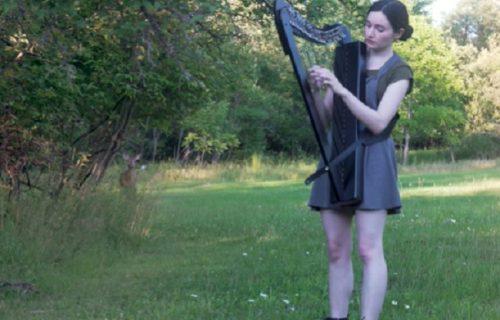 Svirala u šumi, a onda je privukla pravog ljubitelja harfe: Dobila je najvernijeg slušaoca (VIDEO)