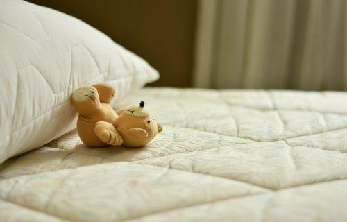 Fotografija spavaće sobe i pas na njoj namučili su mnoge, možete li makar naslutiti gde se krije? (FOTO)
