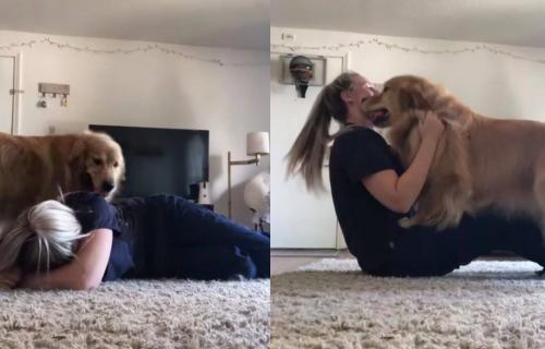 Loše raspoloženje nije opcija: Pas je video da mu je vlasnica TUŽNA, a onda ju je razveselio (VIDEO)