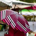 Jaka OLUJA iz Hrvatske hrli ka Srbiji: Kiša napravila haos, upaljen METEOALARM (VIDEO)
