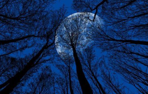 Nebo će na Noć veštica obasjati PLAVI mesec: Istorija kaže da to može da znači samo JEDNO