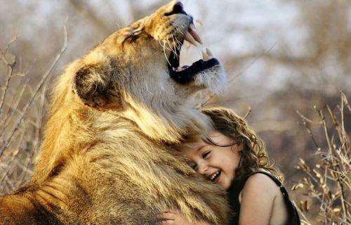 Najluđi hotel na svetu: Gosti spavaju s lavovima, ujutro doručkuju sa žirafama (FOTO)