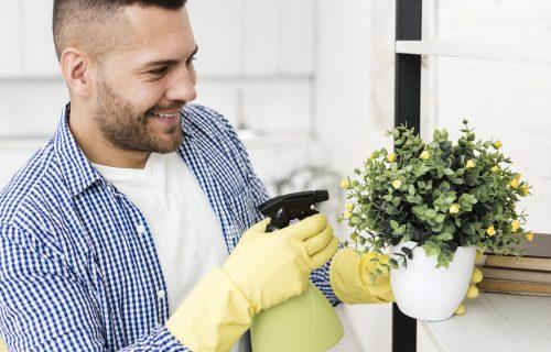 Idealno za lenje: 4 vrste sobnog bilja koje je i lepo i LAKO za ODRŽAVANJE (FOTO)