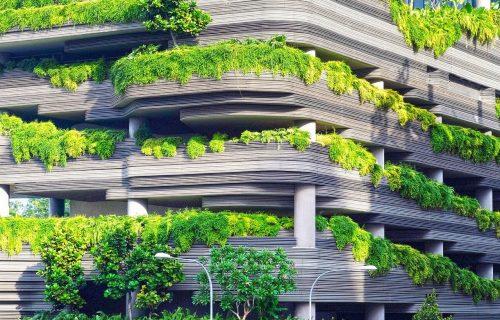 VISEĆI VRTOVI: Zavirite u solarni kompleks sa 20.000 stabala i biljaka (VIDEO)