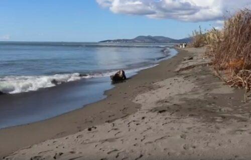 Nestaje čuvena plaža u Crnoj Gori, iz dana u dan sve je gora situacija (VIDEO)
