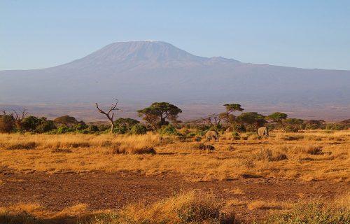 Gori vrh Afrike: Vatrogasci u Tanzaniji pokušavaju da ugase požar na Kilimadžaru (FOTO)