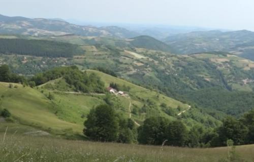 Slaviša poterao krave na ispašu, pa našao IZVAĐENU UTROBU: Užas kakav Nova Varoš ne pamti