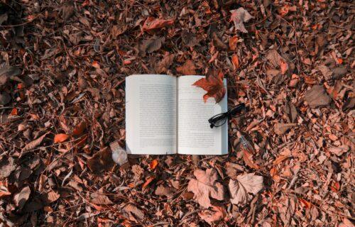 """Alternativa Sajmu: Festival """"Knjiga na Trgu"""" se održava ovog vikenda"""
