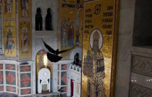 ČUDO BOŽIJE! Golub uleteo u Hram Svetog Save tokom molitve za upokojenje patrijarha Irineja (FOTO)