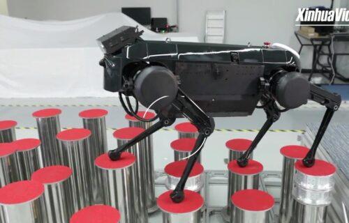 Upoznajte Jamoca: Kineski robot-pas poseduje veštine Kung-fu majstora (VIDEO)