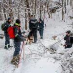 TRAGIČAN KRAJ potrage za muškarcem koji je nestao na Božić: Beživotno telo pronađeno u sedećem položaju