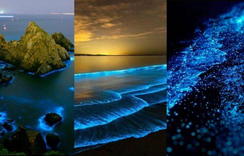 Kupajte se sa ZVEZDAMA: Zbog SVETLUCAVOG mora na Maldivima, ponovo ćete verovati u magiju (FOTO+VIDEO)