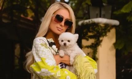 Paris Hilton odlučila da postane majka uz pomoć VANTELESNE oplodnje, a razlog je BIZARAN!