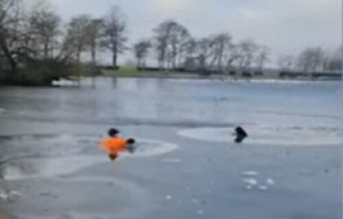 Trčao po parku, pa primetio psa kako se davi u zaleđenom jezeru: Načinio je nestvaran potez