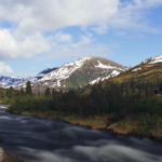 Neobičan incident na Aljasci zbunio i biologe: Čim sam sela na VC šolju nešto me ujelo za zadnjicu!