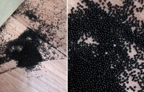 Ušla kod sina u sobu, pa se oduzela: Kakve su ovo grozne, crne kuglice po zidovima i podu?