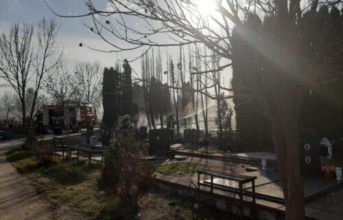 Požar na gradskom groblju u Čačku uoči Zadušnica: Zapalile se tuje, vetar rasplamsao vatru (FOTO)