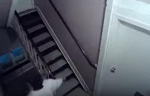 Novopazarka nalazila ČUDNE i GADNE stvari ispred ulaznih vrata: Postavila kameru, pa otkrila UŽAS (VIDEO)