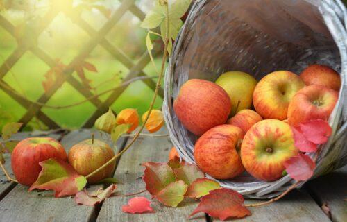 Istina ili mit? Da li je zaista tačno da jabuke MORATE da jedete svaki dan?