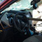Drvo palo na automobil i Terezi PROBILO UTROBU! Usledilo je čudo neviđeno