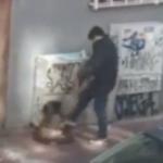 Uhapšen ZLOTVOR koji je tukao psa: U centru Beograda šutirao i udarao bespomoćnu životinju (VIDEO)