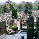 Pogrebnik krao vence sa grobova, pa POKAZIVAO polni organ komšijama: Dolijao MANIJAK iz Petrovca na Mlavi