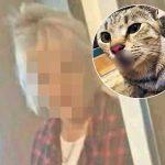 UŽAS u Beogradu: Komšinica BACILA skotnu mačku sa 5. sprata, Dušica opisala horor (UZNEMIRUJUĆI FOTO)