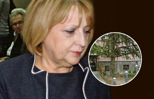 Lopovi su IMALI KLJUČ i tačno znali gde je novac: Đukić Dejanović otkrila kako su joj ukrali 4.000 evra