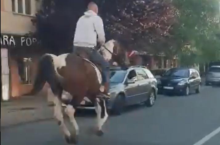 HIT scena u Beogradu: Zajahao KONJA do prodavnice, natovario namirnice, pa ODJURIO (VIDEO)