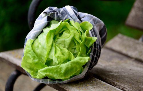 Prirodna apoteka: Zelena salata ublažava bolove, jača imunitet i snižava visok krvni pritisak