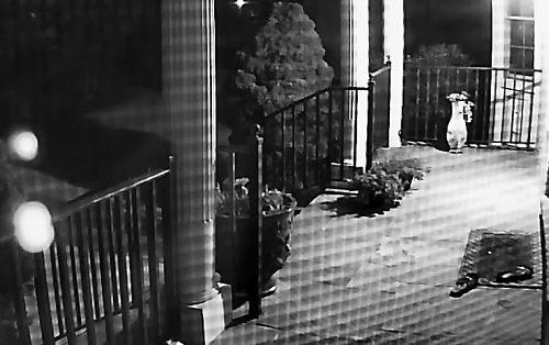 Neko im je svako veče krao sandale sa terase, pa su postavili kameru: Zapanjili su se KO je lopov (VIDEO)