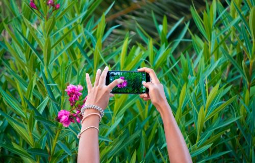 Kako do savršene fotke? Ovaj jednostavan trik oduševio je milione (VIDEO)