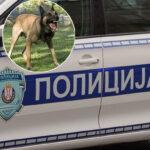 Dete se borilo, bilo je celo U KRVI: Deda dečaka (2) kog je izujedao pas ispričao DETALJE