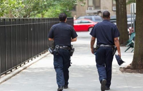 Imao je veoma dubok džep: Policajac suspendovan zbog krađe JAJA sa ulice (VIDEO)